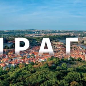 Годовой курс чешского языка